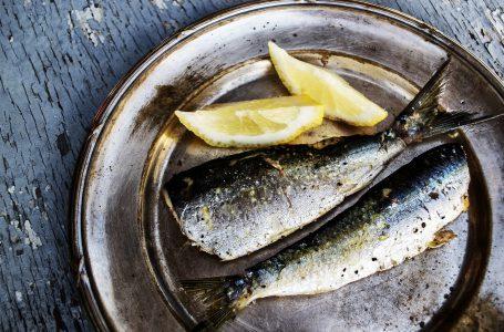 Kulinarna podróż po Albanii