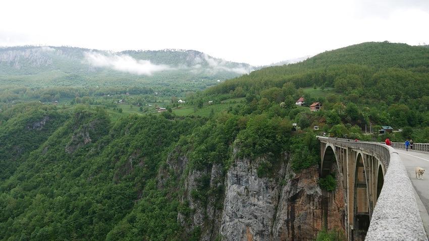 dolina tary