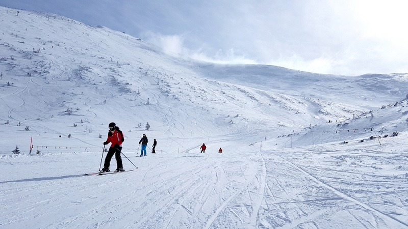 gdzie na narty
