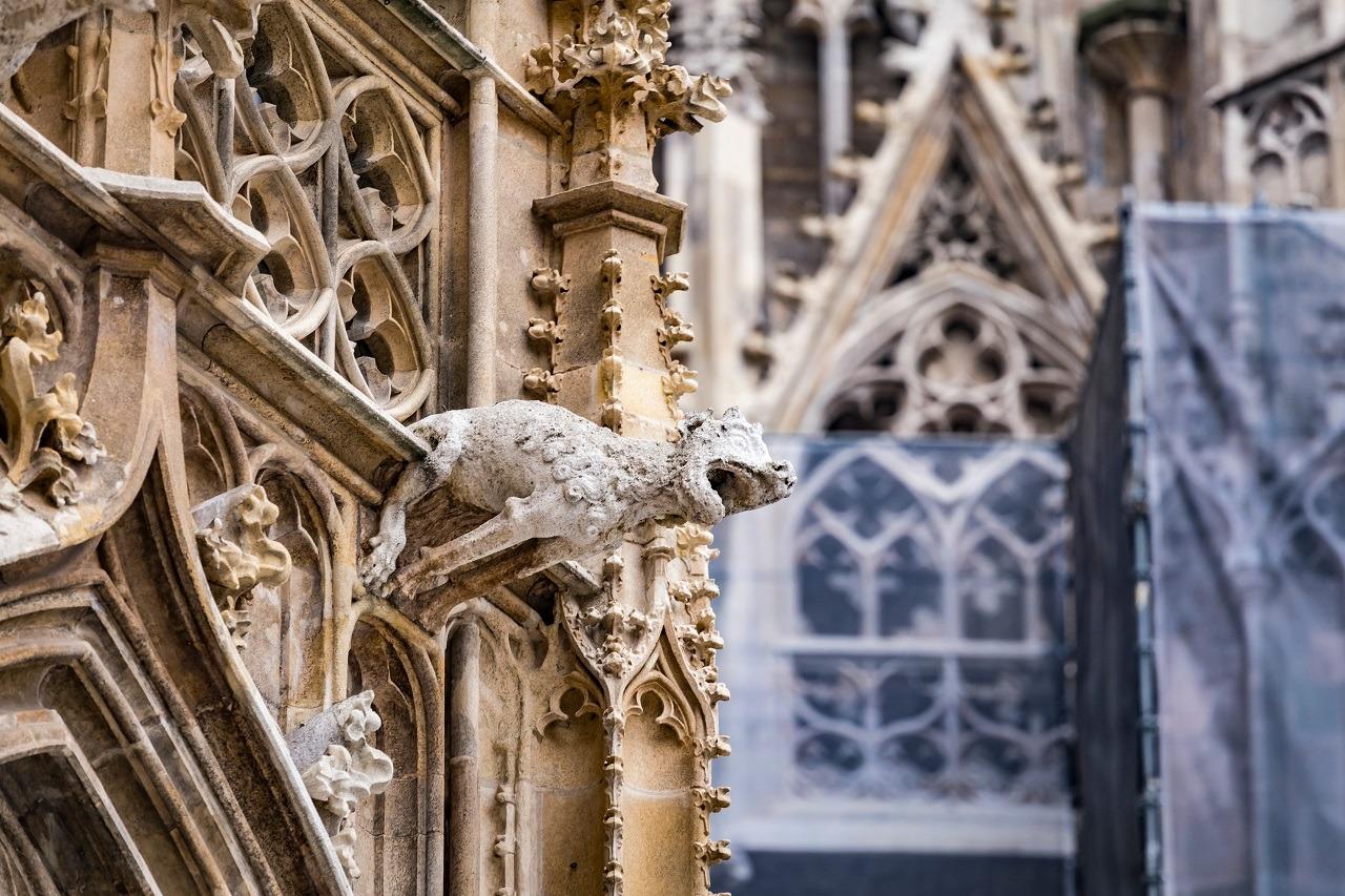 katedra św szczepana