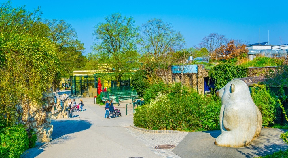 wiedeń zoo