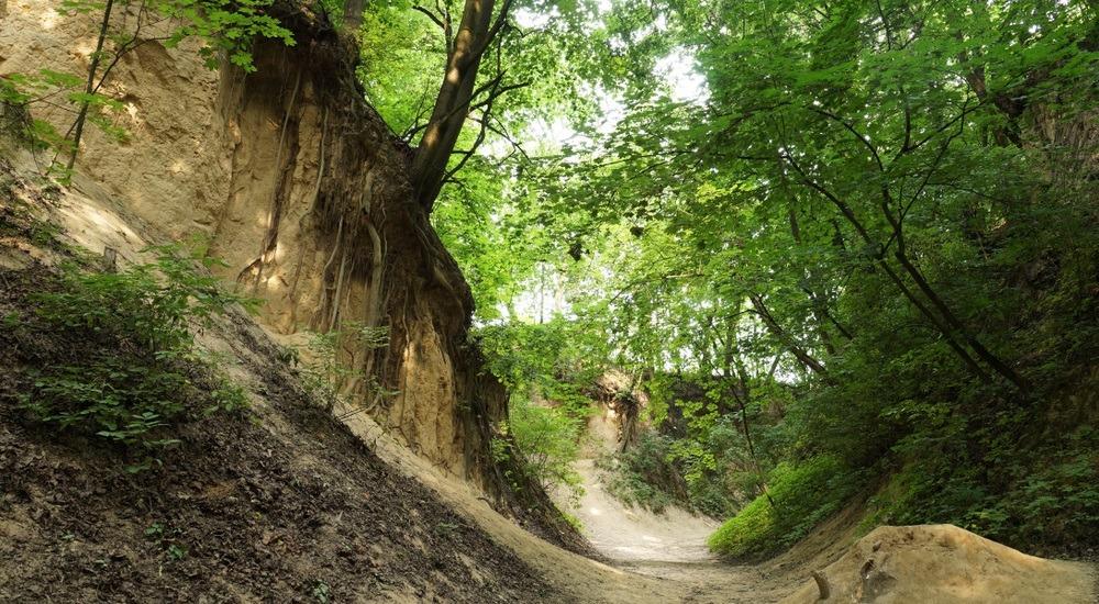 atrakcje turystyczne sandomierz