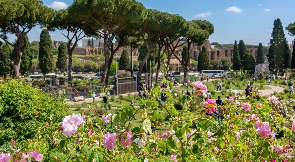 ogród pomarańczowy rzym