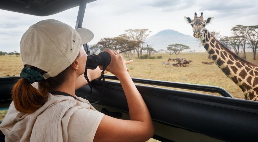 równina serengeti