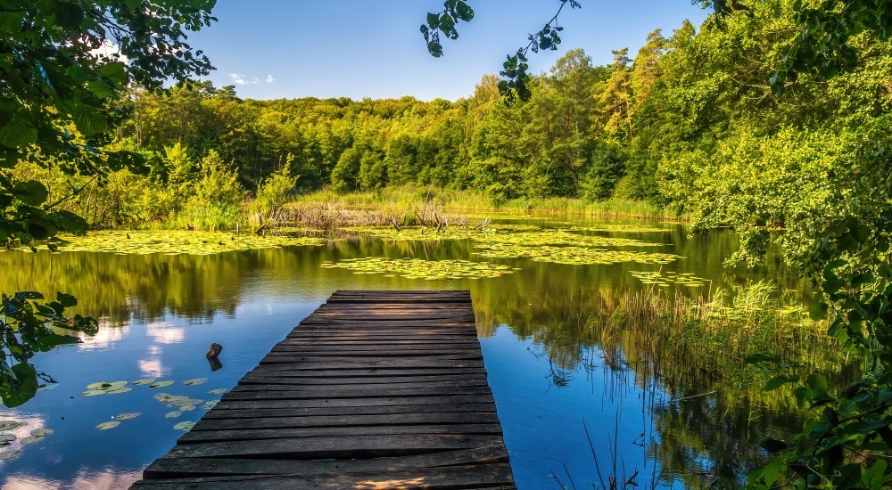 woliński park narodowy ciekawostki