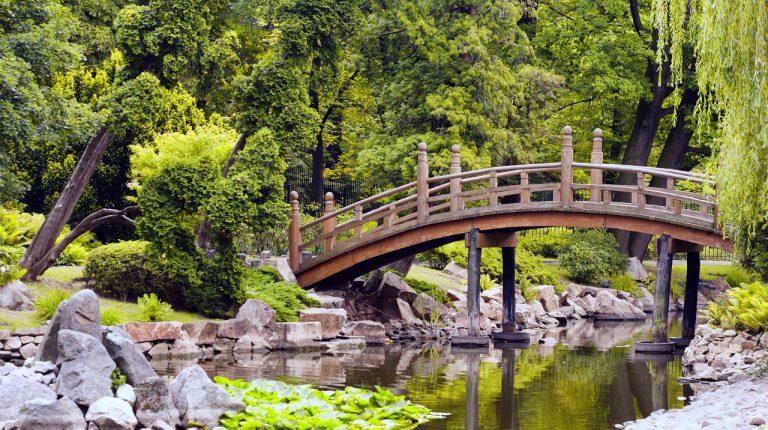 ogrod japonski wroclaw