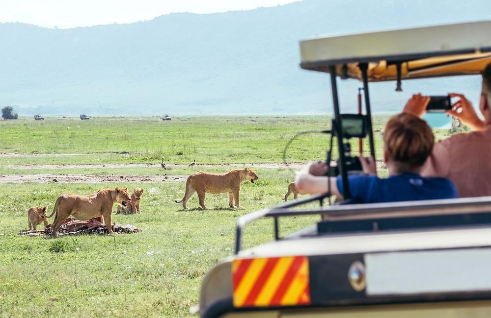 zwiedzanie Ngorongoro
